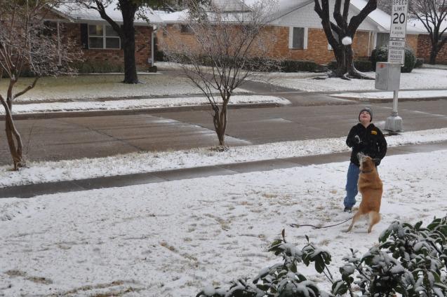 Snowball Catch